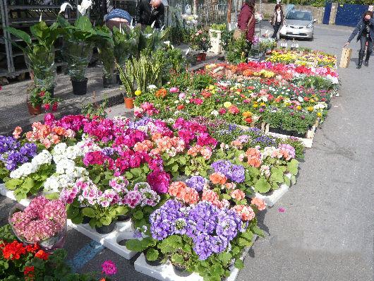 mercatino dei fiori napoli