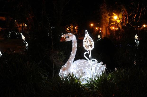 Illuminazione Natale Salerno ~ Ispirazione di Design Interni