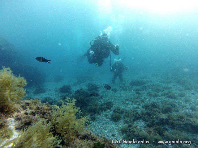 immersioni diving gaiola