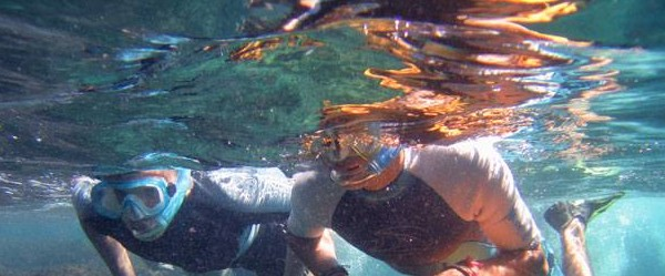 snorkeling gaiola
