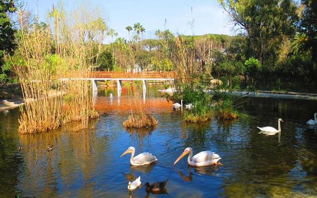 zoo di napoli fattoria