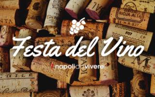 La Festa del Vino Aglianico al Borgo di Montemarano