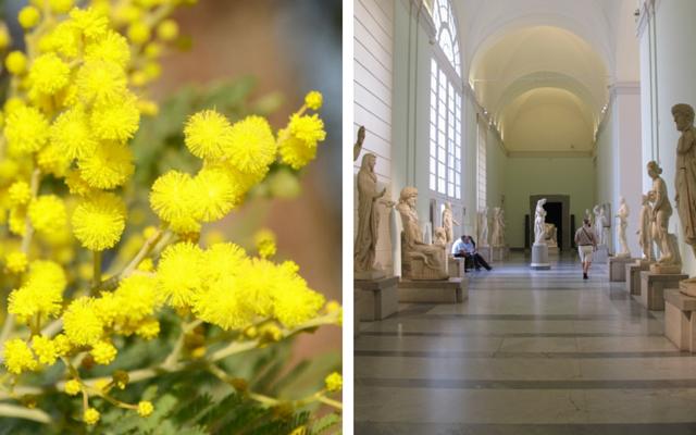 Festa della Donna 2016 a Napoli musei Gratis per le donne