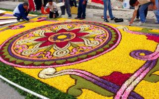 Infiorata di Cusano Mutri: tappeti di Fiori per le strade del Borgo
