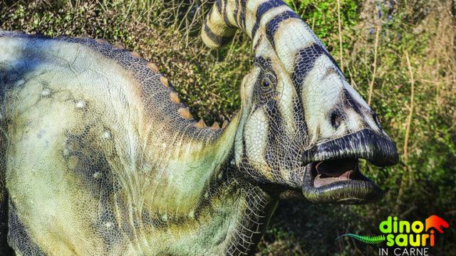 Risultati immagini per dinosauri agnano