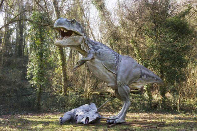 dinosauri agli astroni 2019
