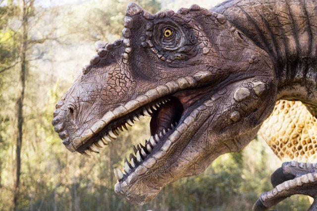 dinosauri in carne ed ossa napoli