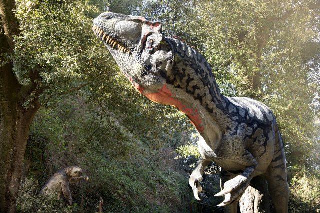 dinosauri oasi wwf