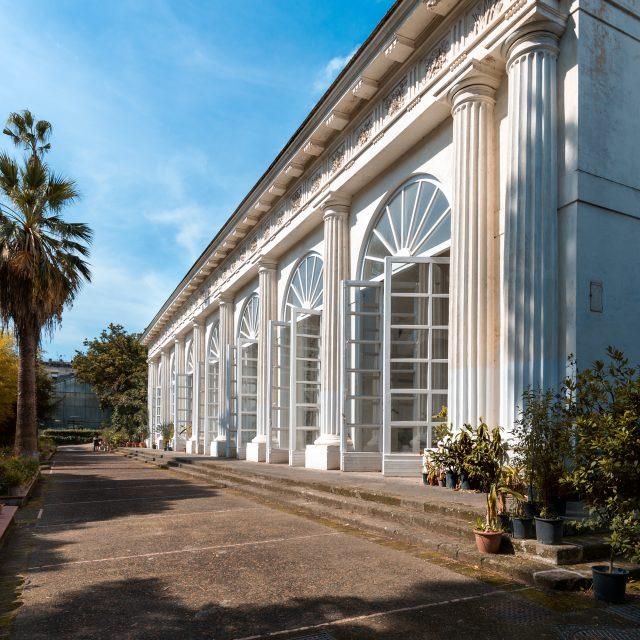 orto botanico napoli - planta 2019