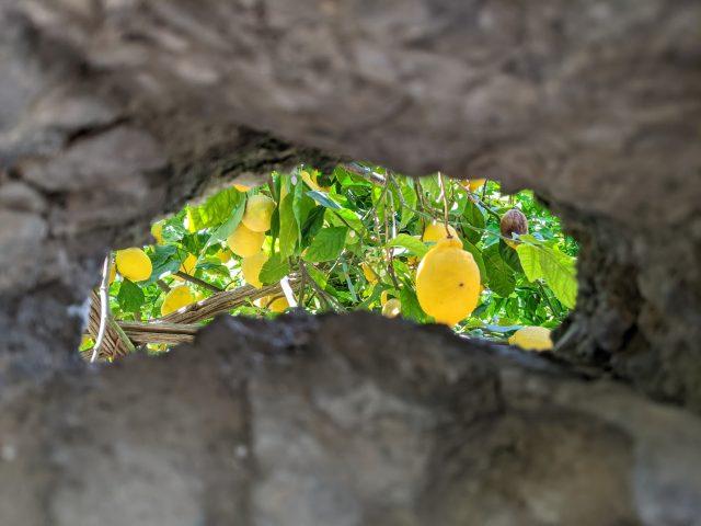 sentiero dei limoni e i suoi limoneti