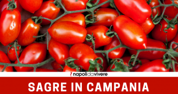 4-sagre-in-Campania-weekend-12-13-novembre-2016.png