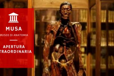 APERTURA-STRAORDINARIA.png