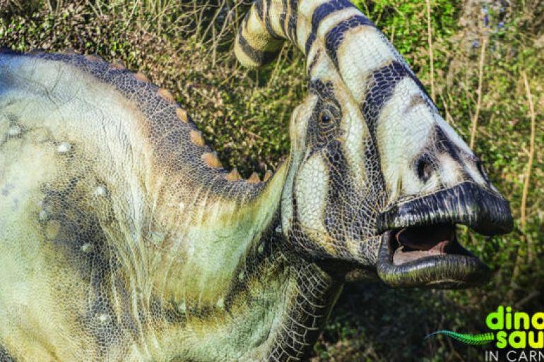Arrivano-i-Dinosauri-allOasi-WWF-degli-Astroni.jpg