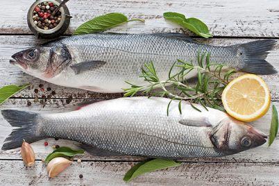 Festa-del-pesce-e-delle-Alici-a-Marina-di-Pisciotta.jpg