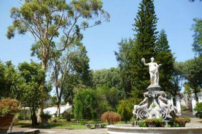 Grande-festa-per-i-145-anni-dellOrto-Botanico-alla-Reggia-di-Portici.jpg