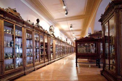 Museo-di-Anatomia-dell'Università-di-Napoli-ingresso-gratuito-.jpg