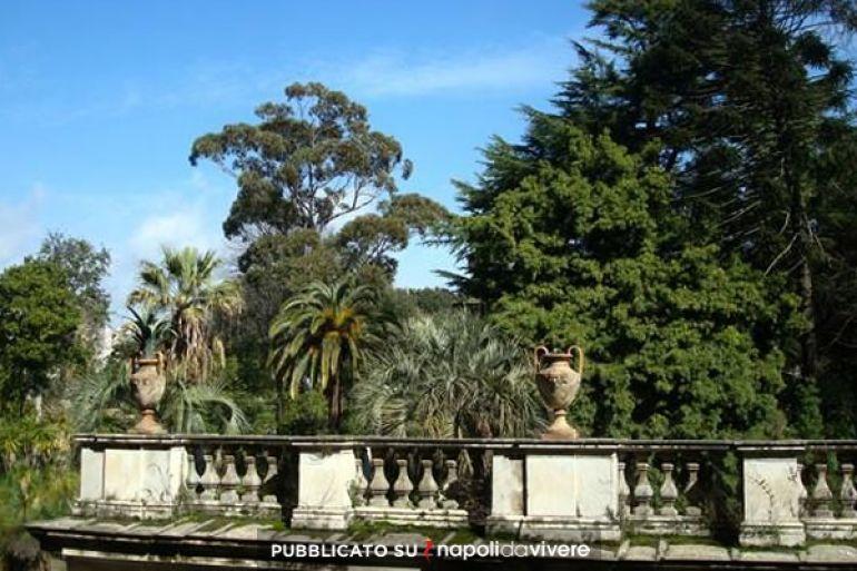 Risultati immagini per orto botanico napoli da vivere
