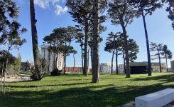 Parco-ex-birreria-peroni-2.jpg