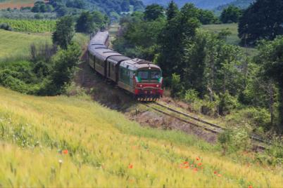 Treno-delle-Castagne-IGP-per-la-Sagra-di-Montella-AV.png