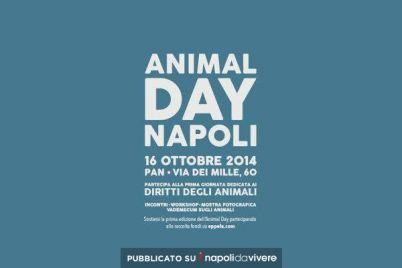 animal-day-pan.jpg
