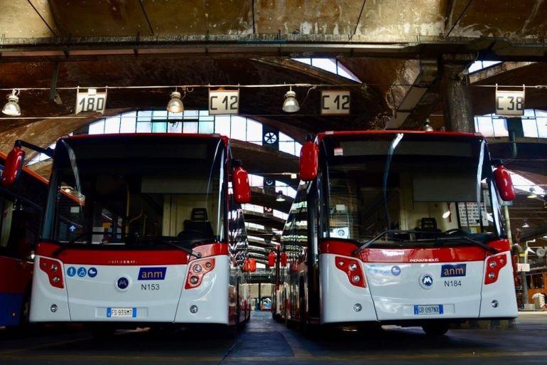 anm-school-autobus-per-studenti.jpg