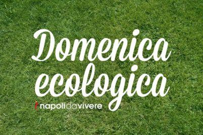 domenica-ecologica-napoli-1-giugno-2014.jpg