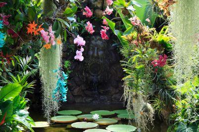 giardino-a-valle-la-mortella.jpg