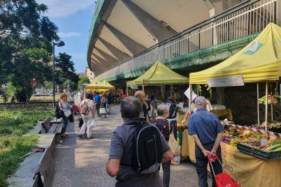 mercati-Campagna-Amica-4.jpg