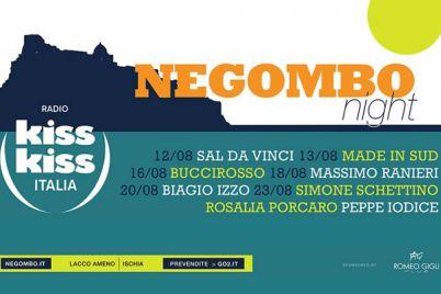 negombo-nights-2013.jpg