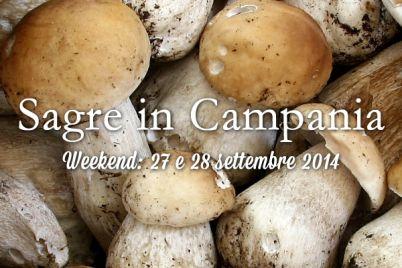 sagre-campania-27-e-28-settembre-2014.jpg