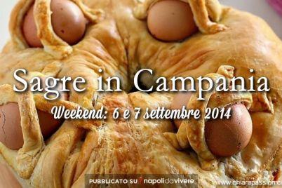sagre-in-campania-6-e-7-settembre-2014.jpg