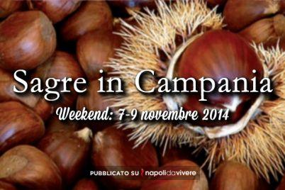 sagre-in-campania-7-9-novembre-2014.jpg