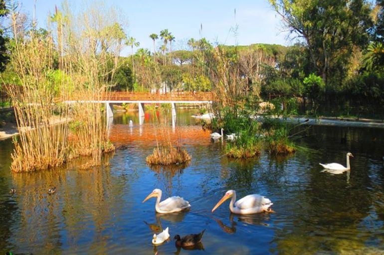 zoo-di-napoli-fattoria.jpg